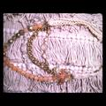 Anthropologie Jewelry | Anthropologie Macrame & Charm Necklace | Color: Cream/Pink | Size: Os