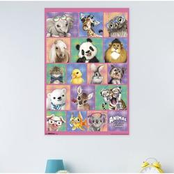 Trends International Animal Club - Group Paper Print Paper in Pink, Size 34.0 H x 22.375 W x 0.125 D in   Wayfair POD14559