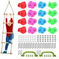 Odoland Rock Climbing Holds Set with Climbing Rope Ladder, Auxiliary Climbing Handle and Mounting Bolts - Kid Climbing Grips DIY Rock Stone Wall Suits Children and Youth