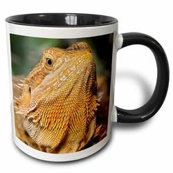 East Urban Home Bearded Dragon Lizard, Native To Australia Coffee Mug Ceramic in Black, Size 3.75 H x 4.0 W in   Wayfair