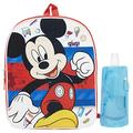 Mickey Mouse Backpack Combo Set - Mickey Mouse Boys 3 Piece Backpack Set - Backpack, Water Bottle and Carabina (Mickey Disney)