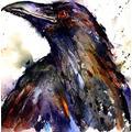 Crow DIY Digital Painting Adult Press Digital Painting Acrylic Oil Painting Pigment Digital Set Home Decoration Mural Creative Picture =-