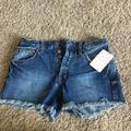 Free People Shorts | Blue Denim Shorts! Free People | Color: Blue | Size: 24
