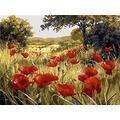 Qbbes Peinture par Numéros Peinture Bricolage Scène De Fleurs Et Plantes Peinture Bricolage Peinture par Numéros Kits sur Toile Décorations Cadeaux C