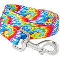Frisco Tie Dye Swirl Polyester Dog Leash, Large: 6-ft long, 1-in wide