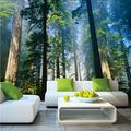 Dalxsh 5D Murals Forests Wallpaper Nature Fog Trees 3D Wall Photo Mural Forest Wall Paper for Background Bedroom 3D Wall Murals-250X175Cm