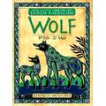 Little Earth Medicine Library: Wolf