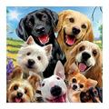 Crystal Art Dog Buddy, Friends for Life 5D Full Drill Diamond Painting Kit DIY Cross Stitch Art Craft Rhinestone Crystal Embroidery Pictures for Adult