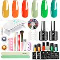 Bluedee Gel Nail Polish Starter Kit 6 Popular Colors & Gel Base and Top Coat & 1 UV/LED Mini Nail Lamp & 11 Upgraded Nail Art Tools Set for New Beginner All-in-1 for Home DIY Manicure Gift