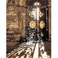 Peinture l'huile numéros Adulte - Porte de fer Sunshine - DIY Peinture à l'huile par numéros Oeuvre d'art peinte avec des pinceaux et de l'acrylique, cadeau créatif - 40x50cm (Avec cadre)