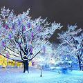 N\A Christmas Meteor Shower Lights, Rain Drop Lights 8 Tube 11.81 Inch 192 LED Snowfall Led Lights, Waterproof Garden Lights for Halloween Christmas Tree Decorations Wedding