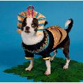 KING MUTT DOG COSTUMES King Tut Egyptian Royalty Pharaoh Dogs Halloween Wear (Size 0)