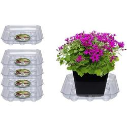 """Curtis Wagner Plastics SQDS-800 Carpet Saver Plant Tray Drip Pans (5-Pack) - Clear, Square (Diameter = 8"""" top, 5.75"""" Bottom, 1.62"""" Depth) Thick Plastic Indoor & Garden - Clear, Black & Terracotta"""