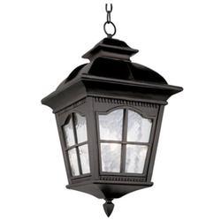 Trans Globe Lighting 5421 Chesapeake 3 Light Outdoor Full Sized Single Pendant