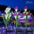 EEEkit Solar Lights Outdoor Garden Stake Lily Flower Lights, 7 Colors Changing Waterproof LED Lily Solar Powered Lights for Patio, Lawn, Garden, Yard Decoration, Backyard Solar Flower Lights, 2pcs