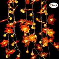 2 Pack 60 LED Maple Leaf & Pumpkin Fall Garland String Lights Thanksgiving Decoration Indoor Outdoor 20 ft Fall Decoration String Lights Garlands for Halloween Holiday Party 3 AA Battery Powered