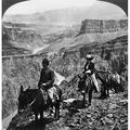 Grand Canyon Sightseers Na Man And A Woman Riding Mules Along The Edge Of A Precipice On The Grand View Trail In The Grand Canyon In Arizona Stereograph C1906 Poster Print by Granger Collection