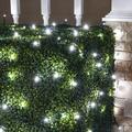 Wintergreen Lighting Cool White LED Net Lights Christmas Net Lights, 100 5mm Lights, 4'x6' Net, Energy Star Rated