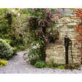 Old Water Pump Ram House Garden Co Wexford Ireland Poster Print by The Irish Image Collection, 32 x 24 - Large