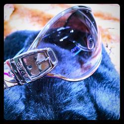 Gucci Accessories   Gucci-Gg 2738s Titanium Framed Sunglasses   Color: Black/Silver   Size: Os