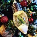 XIAJIE Fairy Lights Battery Operated, Snow Globe Christmas String_Lights Decorations LED Xmas Tree Snowflake Globe Bulb Lights Strand for Outdoor Curtain, Wedding Party, Holiday (Green 5X6 Light)