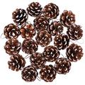 Cooraby 20 Pieces Christmas Pine Cones Pendant Snow Natural Pine Cones Ornament 4 to 6 cm Pine Cones for Christmas Home Thanksgiving Party Decoration