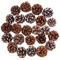 Cooraby 24 Pieces Pine Cones Christmas Snow Pine Cones Natural Pine Cones 4 to 6 cm Pine Cones for Fall and Christmas Party Decoration Home Decoration