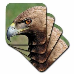 3dRose Ceramic Tile Coasters - Golden eagle - set of 4 (cst_9901_3) Ceramic in Brown, Size 4.0 H x 0.25 D in | Wayfair