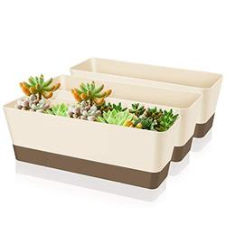 Creproly Plastic Rectangular Planter Window Box, 11.2 Inch Small Succulent Flower Pot with Saucer Vegetables Growing Container for Windowsill Garden Indoor Outdoor(3 Pack)