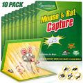 Mouse Traps, Humane Mouse Glue Trap, 10 PCS Rat/Mice Traps Sticky Pad Boards Strongly Adhesive Mouse Traps That Work No See Kill for House Indoor Outdoor Pet Safe