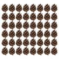 Healifty Natural Pine Cones 48 Pcs Christmas Decorative Pine Cones Ornaments for Christmas Crafts Home Decoration