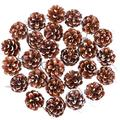 Cooraby 27 Pieces Mini Pine Cones Christmas Snow Hanging Pine Cones Natural Ornament 3 to 4cm Pine Cones Pendant with String Tag Party Decoration