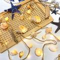 Beached Themed Sea Shell Decorative Conch Hemp Rope Lights, Nautical Night String Lights Lit by 39 LEDs 19 Shells 6.6 feet Battery Powered for Summer Camping Wedding Birthday Bedroom Home Parties