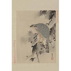 Hawk by Buyenlarge-Graphic Art Print in Brown/Gray, Size 20.0 W x 1.5 D in   Wayfair 0-587-23610-8C2030