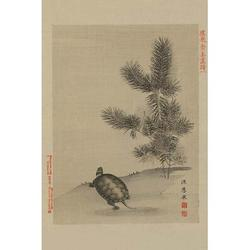 Turtle by Buyenlarge - Graphic Art Print in Brown/Gray, Size 30.0 H x 20.0 W x 1.5 D in | Wayfair 0-587-23614-0C2030
