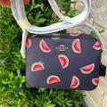 Coach Bags   Brand Mini Camera Bag With Watermelon Print   Color: Blue/Pink   Size: 7 14 (L) X 5 14 (H) X 2 (H)