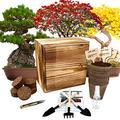 Hand-Mart 4 Bonsai Tree Seeds with Box Starter Kit, Sakura Ginkgo Pine Flame Tree, Including Everything-Soil, Pots, 3 Garden-Tool, Pruner, Sprayer, Plant Labels, Wood Box-DIY Craft