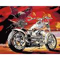 ZFANGY Adult Digital Painting Eagle and Motorcycle Canvas Oil Painting Gift Kids Digital kit Painting House Decoration 40x50cm with Frame