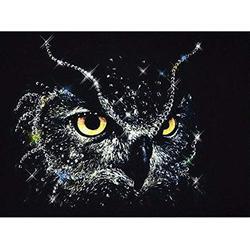 5D DIY Diamond Painting Black Owl Patterns Rhinestones 5d DIY Diamond Embroidery kit Crystal Diamond Painting 3D Full Round Drill Picture Room New Decor