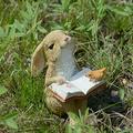 IMFFSE Resin Cartoon Rabbit Decoration, Bunny Statue Yard Decorations, Clever Garden Cute Resin Garden Statue Decoration for Patio Ornaments Yard Home Art Figurines,Reading Rabbit