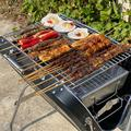 """Outmax Outmax 24"""" Outdoor Portable Charcoal Grill w/ Smoker, Stainless Steel in Silver, Size 23""""H X 4""""W X 17""""D 