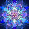 DIY 5D Diamond Painting Full Square Full Diamond Art, Mandala Flower 50X60cm with Digital Painting for Beginners to use-Home Decoration