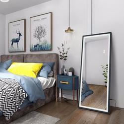 Orren Ellis LED Full Length Mirror Wall Mounted Lighted Floor Mirror Dressing Mirror Make Up Mirror Bathroom/Bedroom/Living Room/Dining Room/Entry Dimmer Touch Sw Metal
