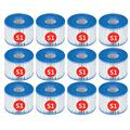 WSND for intex S1 Pool Replacement Filter, 29001e Filters, S1 Filters Cartridge Hot Tub,Pool Replacement Cartridges Type S1 Easy Set,Purespa Type S1 Filter Cartridge (12pcs)