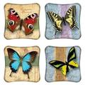Rosalind Wheeler Set Of 4 Butterfly Coasters Ceramic, Size 0.25 H x 0.25 D in | Wayfair C66C3CB185EF4B7085272B2F8F09036A