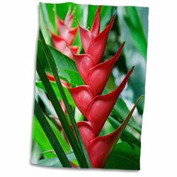 East Urban Home Heliconia, Botanical Gardens & Waterfall, St Lucia Hand Towel Microfiber/Terry/Cotton in Green, Size 22.0 H x 15.0 W in   Wayfair