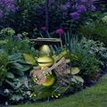 Outdoor Solar Lights Frog Figurines, LED Lawn Lamp Outdoor Garden Ground Pathway Plug-in Lights Landscape Home Hut Iron Piece Frog Lawn Statue Figurine Decor for Yard Patio (C)