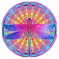 5D Diamond Painting Kits Adults Kids, DIY Dragonfly Paint by Numbers Crystal Rhinestone Diamond Art Pasted Embroidery Cross Stitch Arts Craft Home Wall Bedroom Decor 12X12 inches