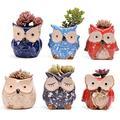 Creative Garden Pot, Ceramic Owl Succulent Pots Cute Animal Plant Planters Flower Pot Container Planter Bonsai Pots with Drainage Holes (B,6 Pieces)