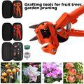 Outil de greffage de jardin professionnel, sécateur de branches, boîte de sécateur de sécateur de